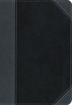 NIV Thinline Compact Bible Imitation Leather Black/Gray Red Letter Edition (Special)