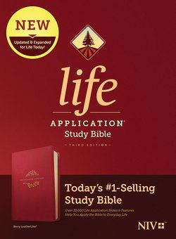 NIV Life Application Study Bible Berry Imitation Leather Third Edition