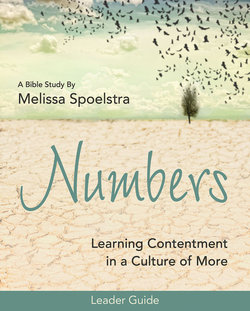 Numbers: Leader Guide Learning Contentment in a Culture of More