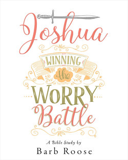 Joshua Women's Bible Study Participant Workbook