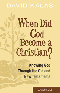 When Did God Become Christian? Leader's Guide