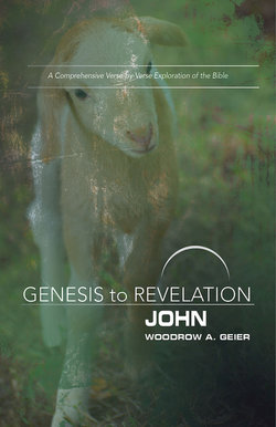 Genesis to Revelation Revised John Participant Guide