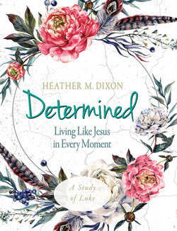 Determined Women's Bible Study Participant Workbook