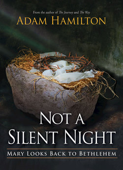 Not a Silent Night: Mary Looks Back to Bethlehem paperback book