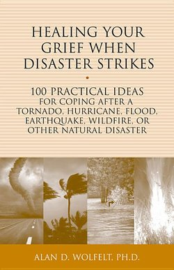Healing Your Grief When Disaster Strikes: 100 Practical Ideas for Coping After a Tornado, Hurricane, Flood, Earthquake, Wildfire, or Other Natural Dis